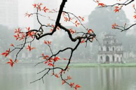 Hanoi City Tour(ru)